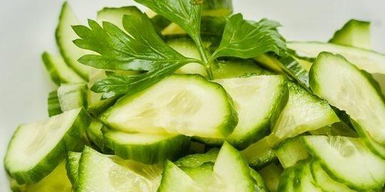 salata de castraveti berceni
