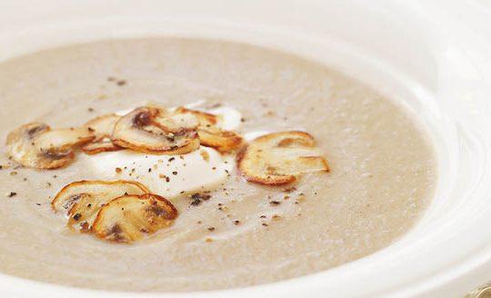 supa crema de ciuperci berceni